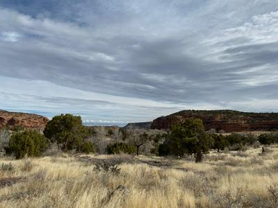 TBD HIGHWAY 141, Whitewater, CO 81527 - Photo 1