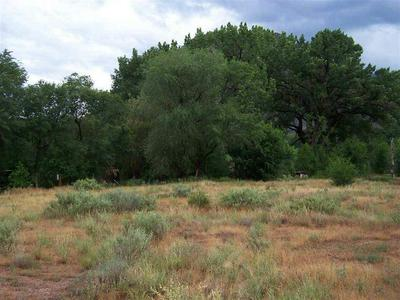 42711 HIGHWAY 141, Gateway, CO 81522 - Photo 2