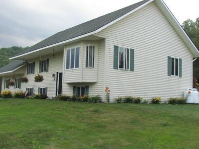 1841 GARNET LAKE RD N, Johnsburg, NY 12843 - Photo 2