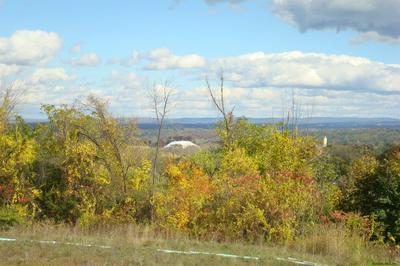 87 WINNIE AVE, Ravena, NY 12143 - Photo 1