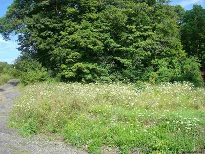 24 OLD STATE RD, Ravena, NY 12143 - Photo 1