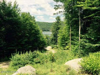 00 EAST SHORE DR, Adirondack, NY 12808 - Photo 1