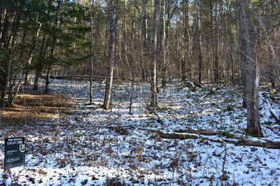0 COUNTY HIGHWAY 39, Worcester, NY 12197 - Photo 2