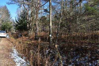 00 MORRELL RD, Worcester, NY 12197 - Photo 2