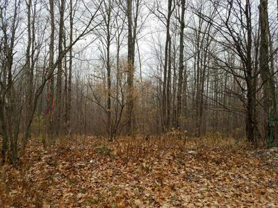 ON COUNTY LINE RD, Merrill, WI 54452 - Photo 2