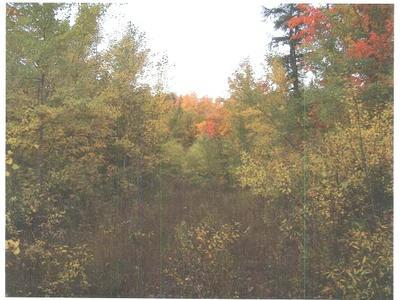 ON FOREST RD 250, Bergland, MI 49910 - Photo 1