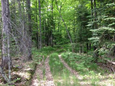 LOT21&23 CTH N, Sayner, WI 54560 - Photo 2