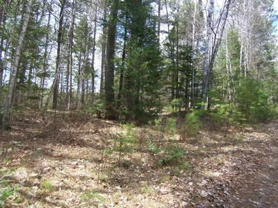 ON LAKE AGNES RD, Pearson, WI 54462 - Photo 1