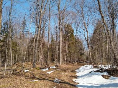 40 ACRES LANGES RD, Irma, WI 54442 - Photo 2