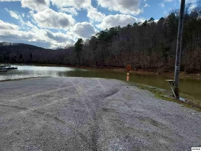PINE HOLLOW ROAD, Jacksboro, TN 37757 - Photo 2