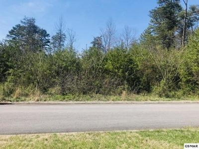 7745 PENNYROYAL DR, Knoxville, TN 37920 - Photo 2