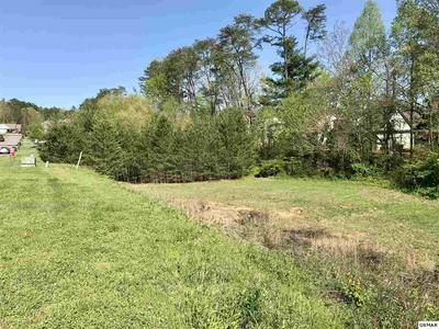 1572 GRAYBROOK LN, Knoxville, TN 37920 - Photo 1