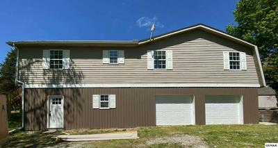 113 JOLLY LN, Jefferson City, TN 37760 - Photo 1