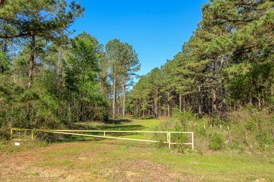 DICKERSON RD, Steens, MS 39766 - Photo 1