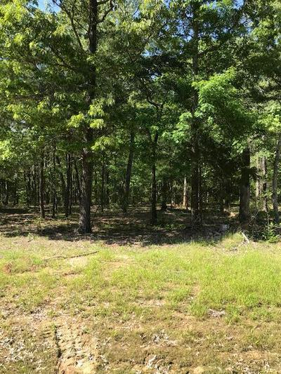 MAYFIELD ROAD, Caledonia, MS 39740 - Photo 1