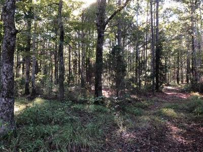 MAYFIELD ROAD, Caledonia, MS 39740 - Photo 2