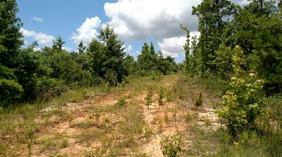 KNIGHT RD, Bellefontaine, MS 39737 - Photo 2