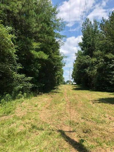HWY 15 BYPASS S, Louisville, MS 39339 - Photo 2