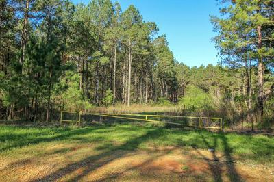 DICKERSON RD, Steens, MS 39766 - Photo 2