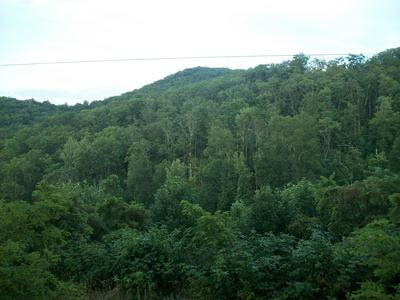 OVERLOOK AT GREENBRIER, Caldwell, WV 24925 - Photo 1