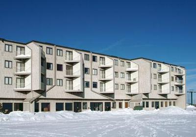 MOUNTAIN LODGE, SNOWSHOE, WV 26209 - Photo 1