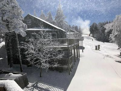 HUTCH, Snowshoe, WV 26209 - Photo 1