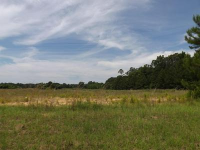 00 SUMRALL RD, Columbia, MS 39429 - Photo 1