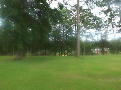10 LAKEVIEW RD, Columbia, MS 39429 - Photo 2