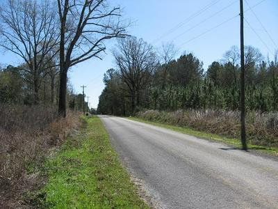 0 SANFORD RD., Moselle, MS 39459 - Photo 1