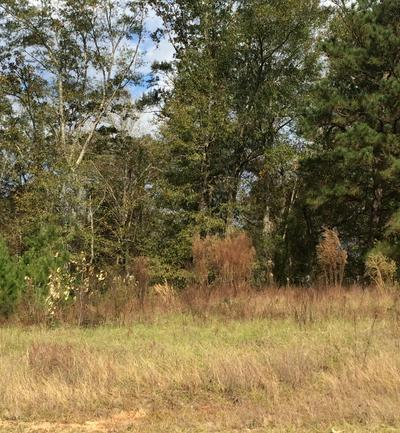 000 OLD HWY 11, Purvis, MS 39475 - Photo 1