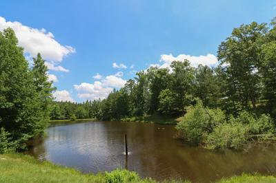 4908 COUNTY ROAD 8, Vossburg, MS 39366 - Photo 2