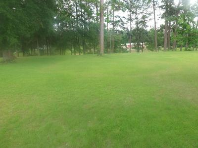 10 LAKEVIEW RD, Columbia, MS 39429 - Photo 1