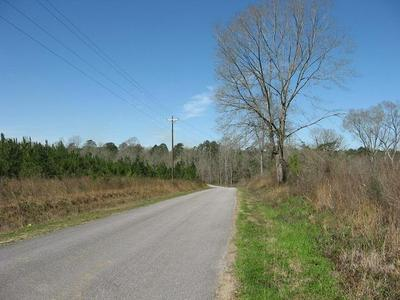 0 SANFORD RD., Moselle, MS 39459 - Photo 2