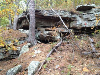 SMITH MOUNTAIN (CR8800) ROAD, Deer, AR 72628 - Photo 2