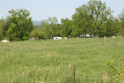 LOT 2 OLD BERGMAN (1.24 ACRE) ROAD, Harrison, AR 72601 - Photo 2