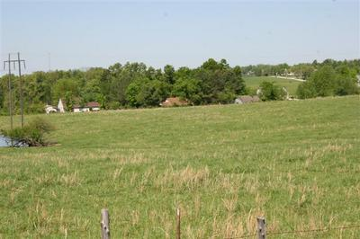 LOT 4 OLD BERGMAN (1.65 ACRE) ROAD, Harrison, AR 72601 - Photo 2