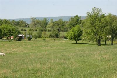 LOT 3 HWY 7 N (2.25 ACRE), Harrison, AR 72601 - Photo 2
