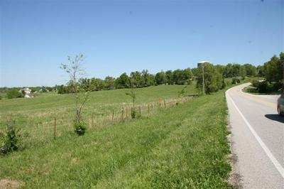 LOT 4 OLD BERGMAN (1.65 ACRE) ROAD, Harrison, AR 72601 - Photo 1