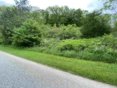 TBD BOONE HOLLOW ROAD, Williams, IN 47470 - Photo 1