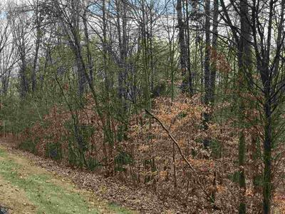 LOT #44 & 45 GRAMWOOD DRIVE, Celestine, IN 47521 - Photo 2