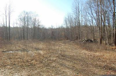 0000 FISH CREEK ROAD, Poland, IN 47431 - Photo 2