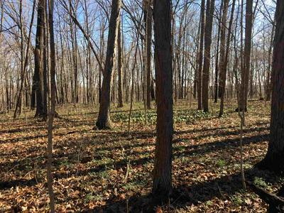 LOT 20 BICYCLE BLUFF LANE, Delphi, IN 46923 - Photo 1