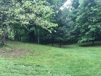 LOT 6 HENDRON HILLS DRIVE, Vincennes, IN 47591 - Photo 1