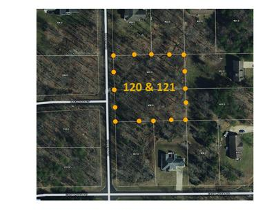 LOT #120 & 121 ROBERT DRIVE, Celestine, IN 47521 - Photo 1