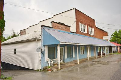 1681 DR THOMAS WALKER RD, Ewing, VA 24248 - Photo 2