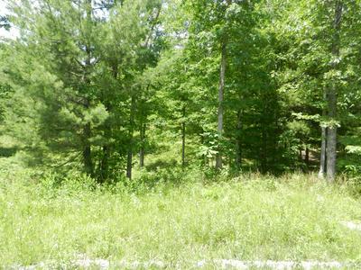 LOT 10 TOOMEY FALLS RD, Oneida, TN 37841 - Photo 2