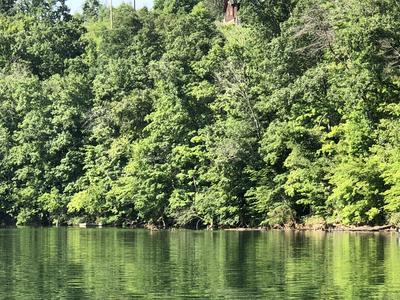 PERRY SMITH LANE, Caryville, TN 37714 - Photo 1