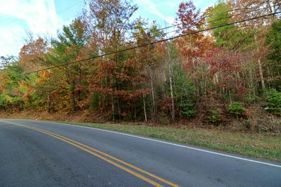 LOT 2 PINE GROVE RD, Winfield, TN 37892 - Photo 1