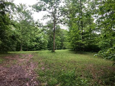 OFF OF HIWASSEE DRIVE, Jacksboro, TN 37757 - Photo 1