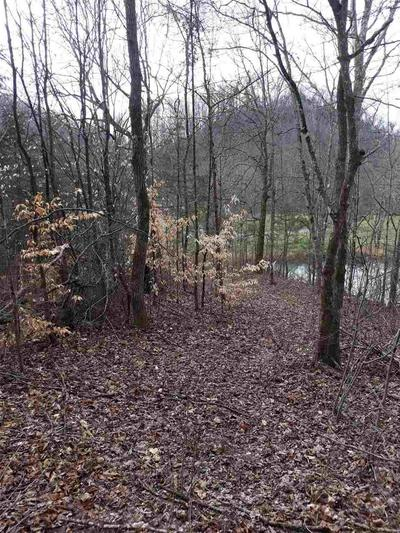 00 UPPER CANEY VALLEY ROAD, Tazewell, TN 37879 - Photo 2